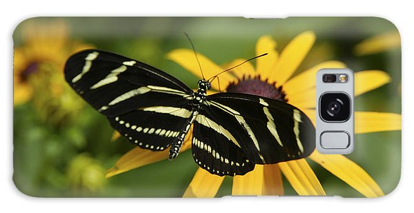 Zebra Butterfly Galaxy Case