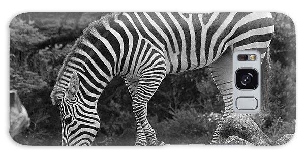 Zebra In Black And White Galaxy Case