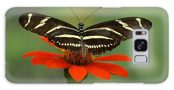 Zebra Longwing Butterfly Galaxy Case