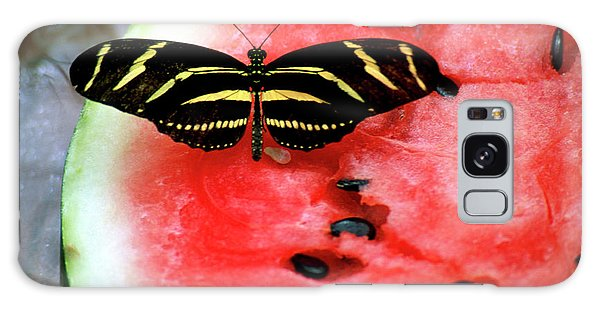 Zebra Longwing Butterfly On Watermelon Slice Galaxy Case