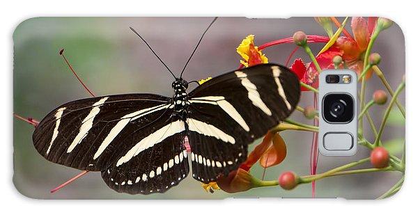 Zebra Longwing Butterfly Galaxy Case