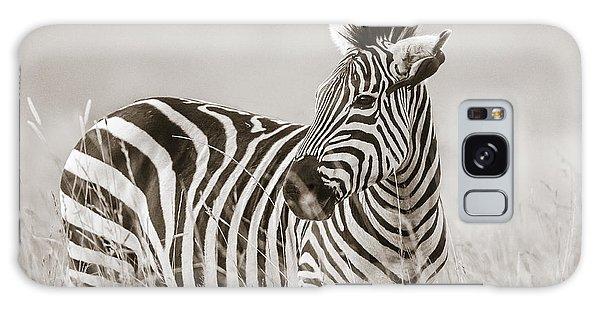 Zebra Masai Mara Kenya Galaxy Case