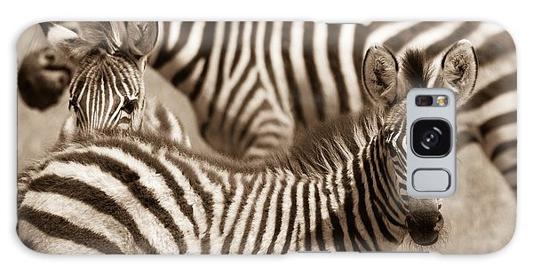 Zebra Stripes Galore Galaxy Case by Chris Scroggins