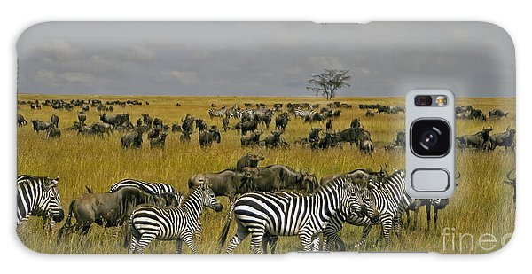 Zebras And Wildebeast   #0861 Galaxy Case