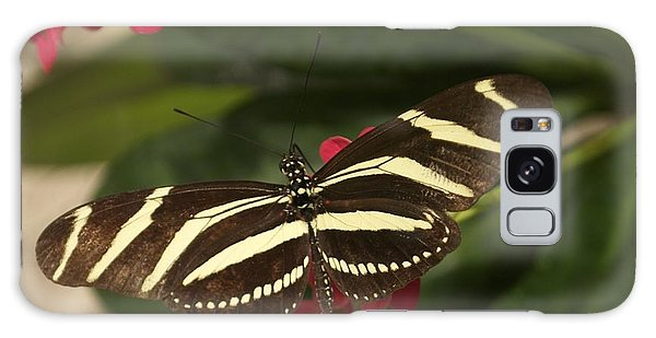 Zebras Can Fly Galaxy Case by Sandy Molinaro