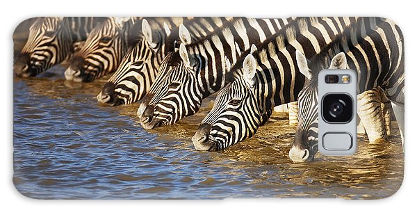 Environments Galaxy Case - Zebras Drinking by Johan Swanepoel