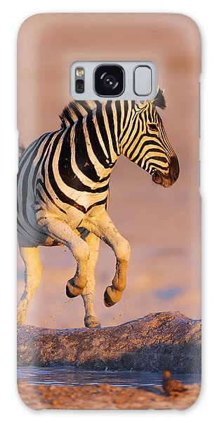 Zebra Galaxy S8 Case - Zebras Jump From Waterhole by Johan Swanepoel