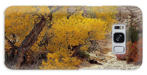 Zion National Park Autumn Galaxy Case
