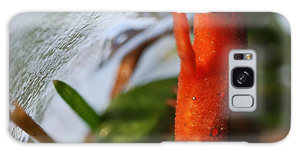 Newts Galaxy Case -  Glass Ceiling by Susan Capuano