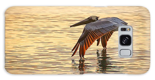 Pelican At Sunset Galaxy Case