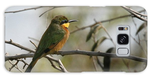 African Bee Eater Galaxy Case