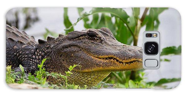 Alligator Galaxy Case