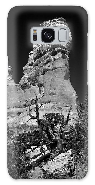 Arches National Park Bw Galaxy Case