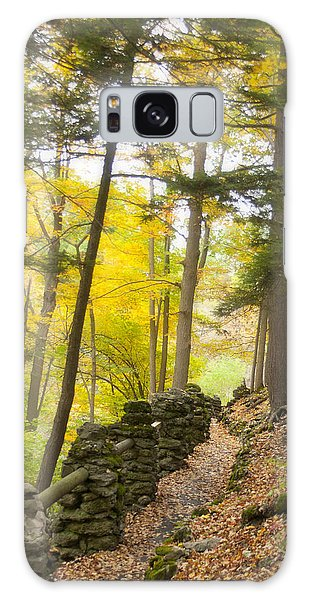 Autumn Hike Galaxy Case by Cindy Haggerty