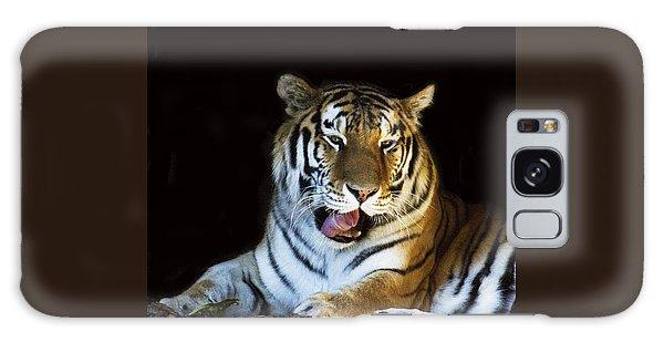 Awaking Tiger Galaxy Case