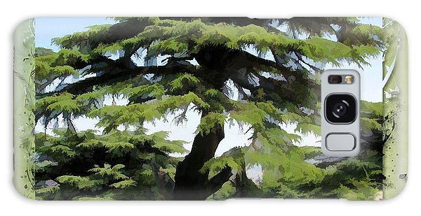 Do-00512 Cedar Forest Galaxy Case by Digital Oil