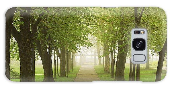 Green Leaf Galaxy Case - Foggy Park by Elena Elisseeva
