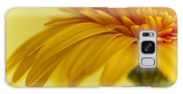 Gerbera Flower Galaxy Case