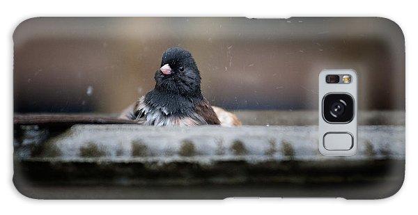 Junco In The Birdbath Galaxy Case by Carol Ailles