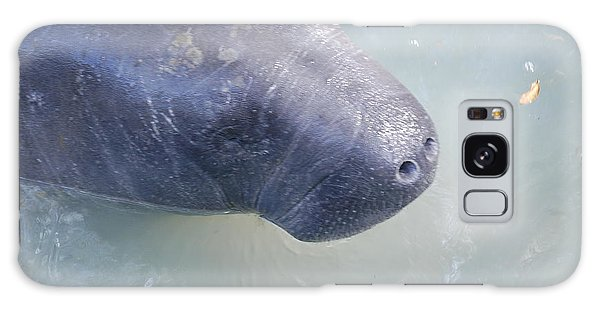 Manatee Galaxy Case