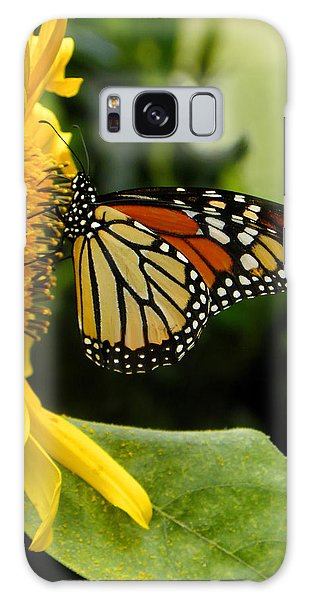 Monarch And The Sunflower Galaxy Case