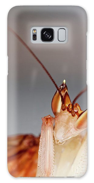 Orchid Praying Mantis Galaxy Case by Joerg Lingnau