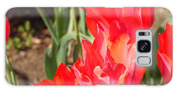 Praying Tulips Galaxy Case by Rod Ismay