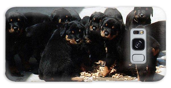 Puppy Chow Galaxy Case