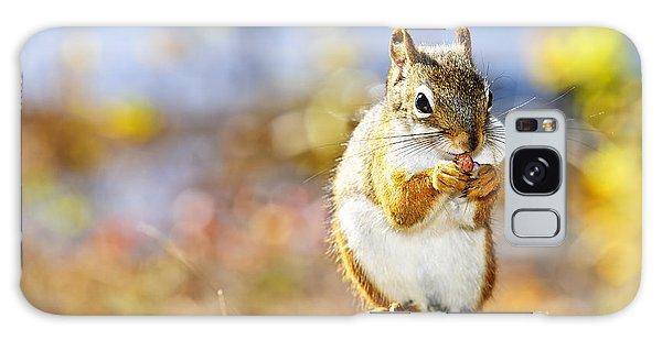 Red Squirrel Galaxy Case by Elena Elisseeva