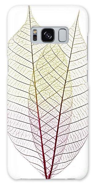 Tint Galaxy Case - Skeleton Leaves by Elena Elisseeva