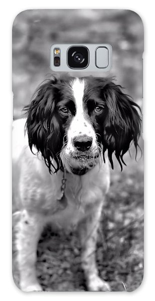 Springer Spaniel Galaxy Case by Marlo Horne