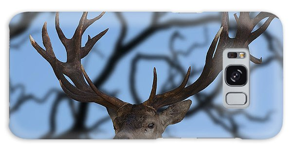 Stag Ramifications Galaxy Case by Michael Mogensen