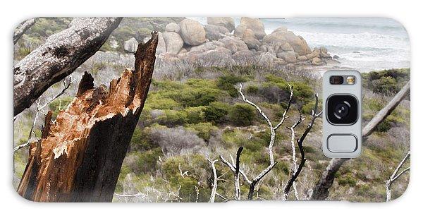 Wilsons Promontory Galaxy Case - The Death Of A Tree V2 by Douglas Barnard