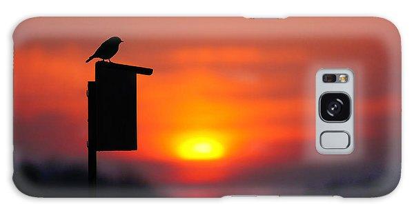 The Early Bird Galaxy Case