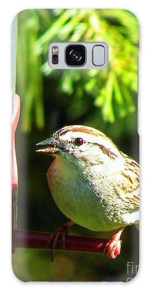 The Sparrow Galaxy Case by J Jaiam