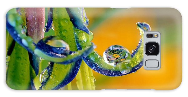 Billbergia Nutans Queen's Tears Galaxy Case by Werner Lehmann