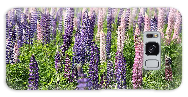 Cabot Trail Galaxy Case - A Field Of Lupins by Ted Kinsman
