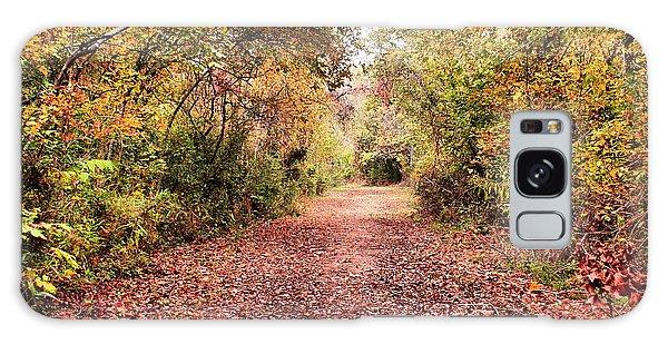 Autumn Trail Galaxy Case by Rick Friedle