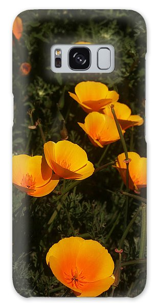 Big Sur California Galaxy Case