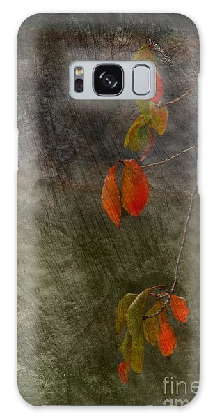 Colours Of Autumn Galaxy Case