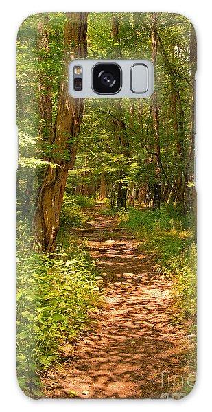 Forest Trail Galaxy Case