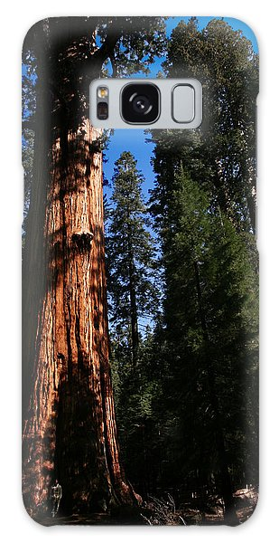 General Sherman Sequoia National Park Galaxy Case