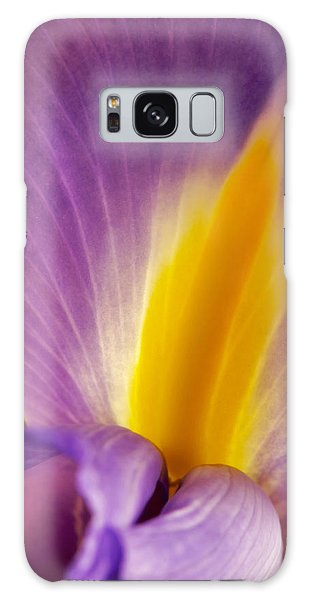 Photograph Of A Dutch Iris Galaxy Case