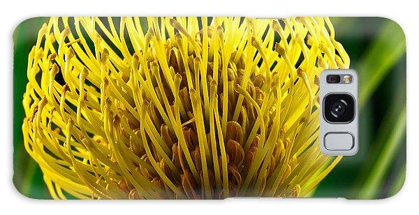 Picture Of A Pincushion Protea Galaxy Case by Perla Copernik