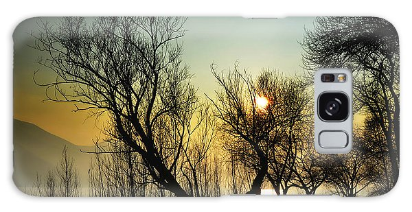 Sunlight Between The Trees Galaxy Case