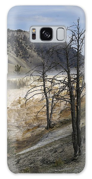 Yellowstone Nat'l Park Galaxy Case