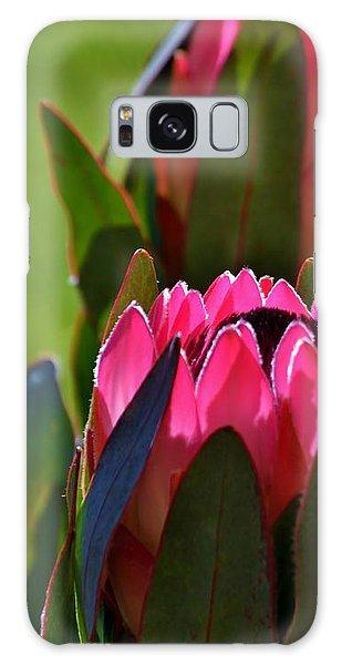 Protea Blossom Galaxy Case