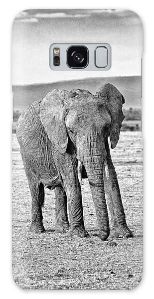 African Elephant In The Masai Mara Galaxy Case