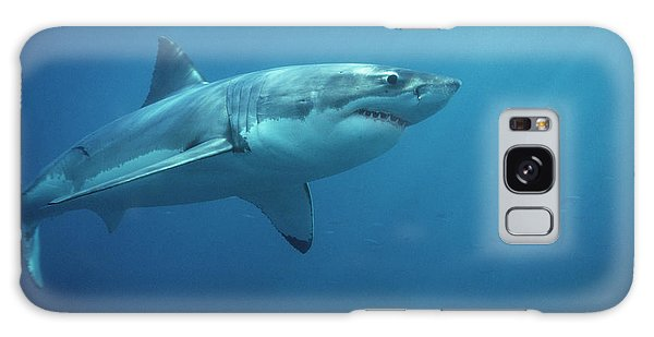 Sharks Galaxy Case - Great White Shark Carcharodon by Mike Parry