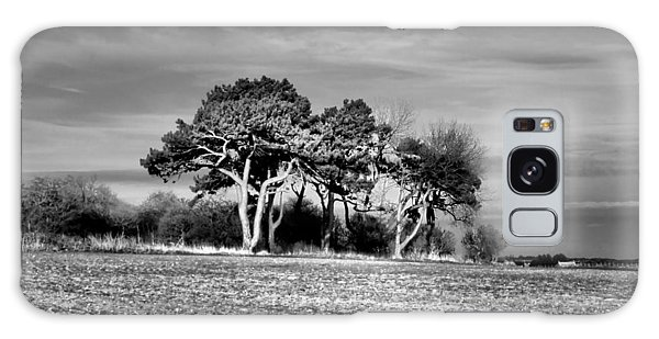 3 Trees Galaxy Case